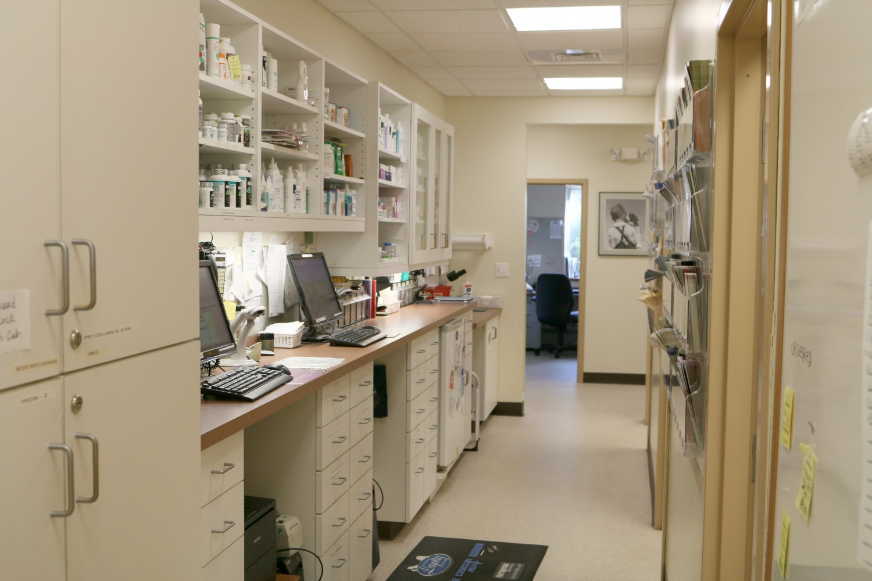 Litchfield Veterinary Hospital - Litchfield, CT - Pharmacy