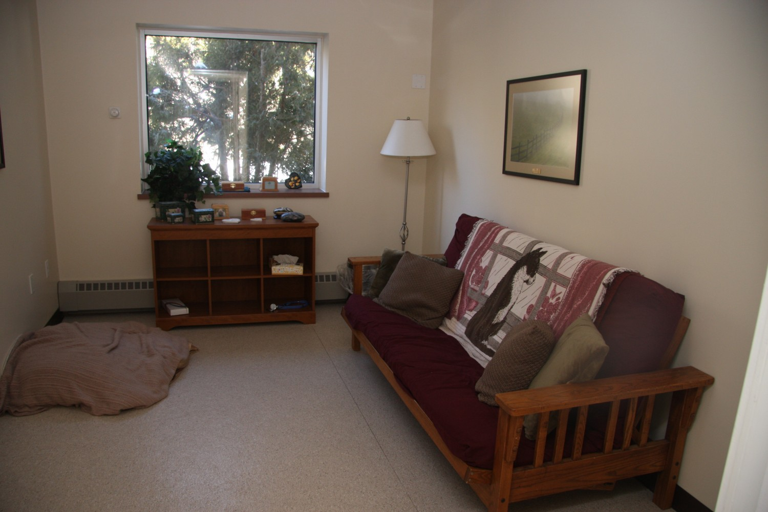 Litchfield Veterinary Hospital - Litchfield, CT - Comfort Room