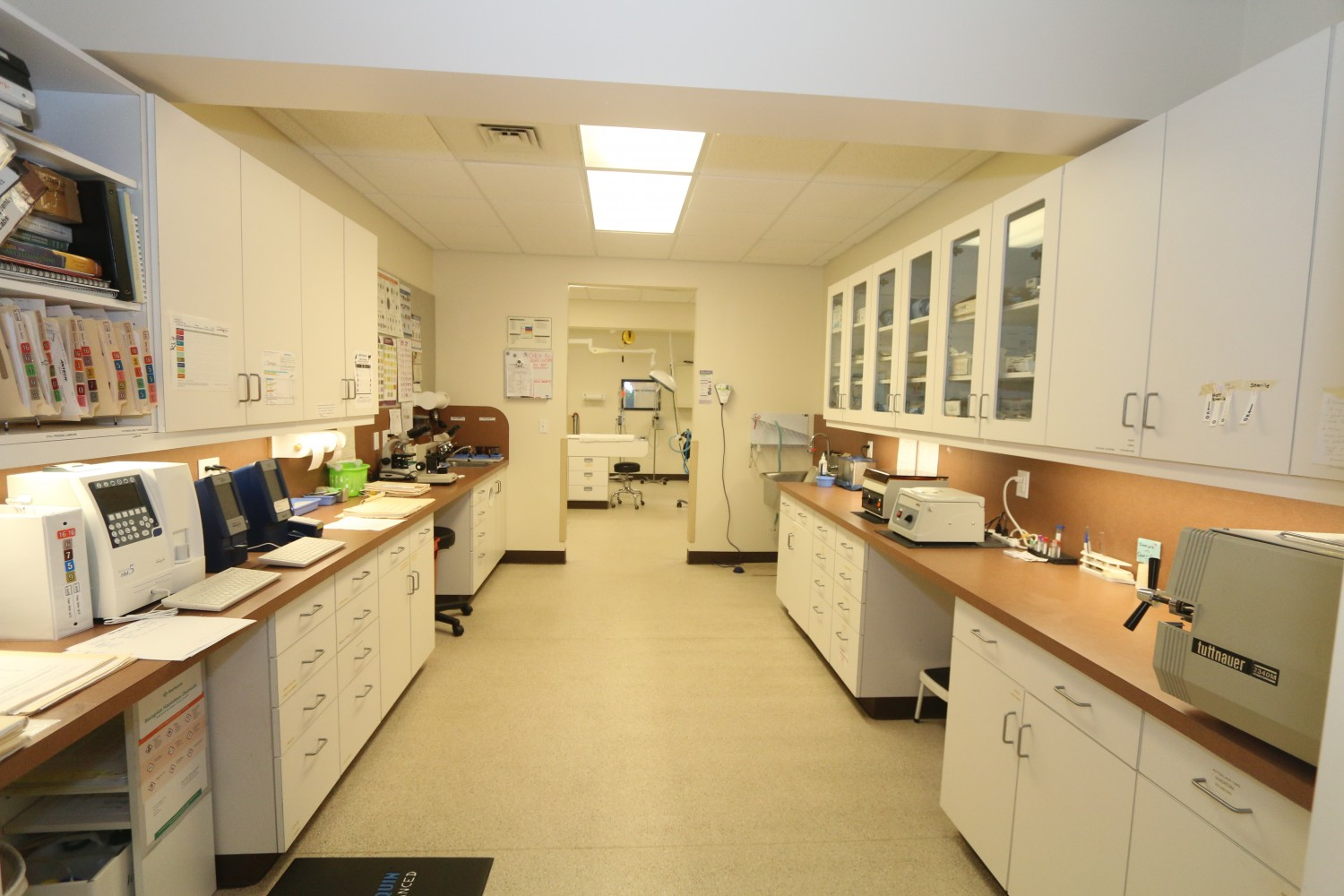 Litchfield Veterinary Hospital - Litchfield, CT - Laboratory