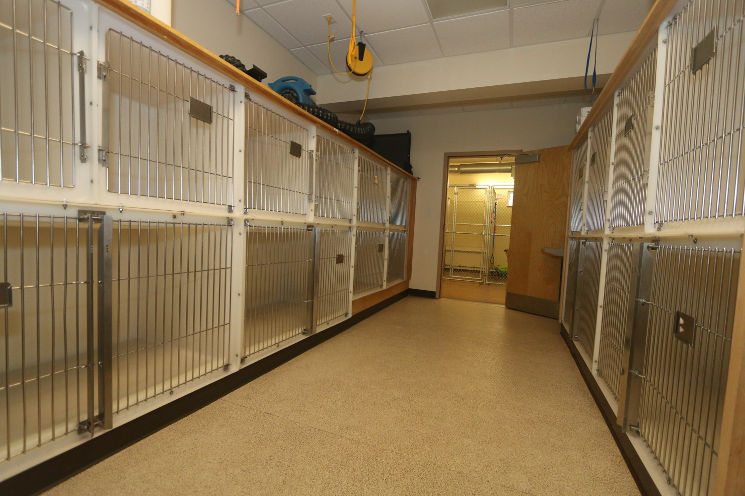 Litchfield Veterinary Hospital - Litchfield, CT - Small Dog Ward
