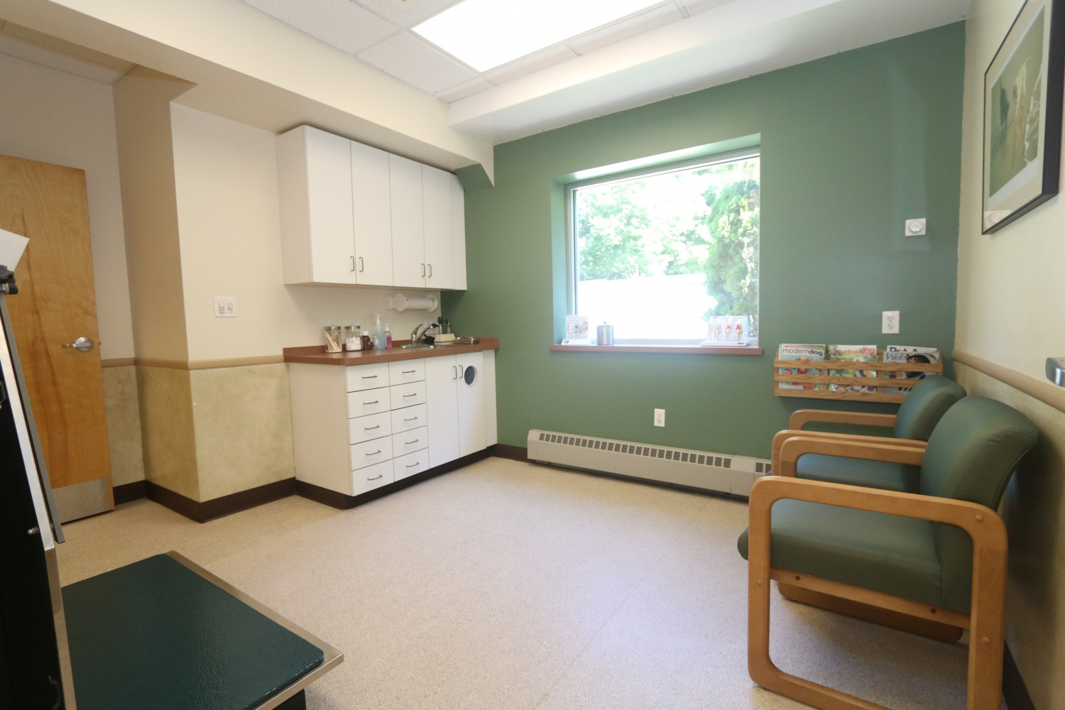 Litchfield Veterinary Hospital - Litchfield, CT - Exam Room