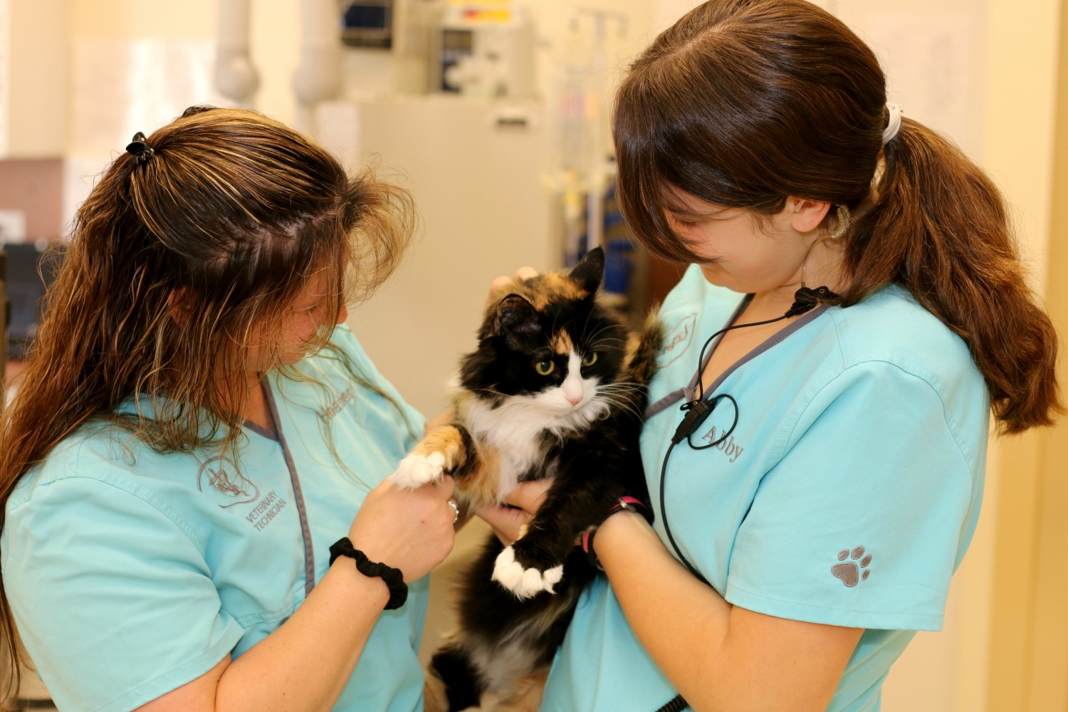 We are committed to providing Fear Free veterinary care to ensure the well-being of our patients